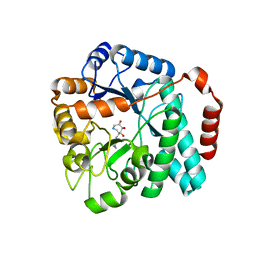 Molmil generated image of 5utr