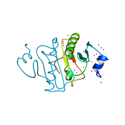 Molmil generated image of 5uvm