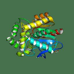 Molmil generated image of 5uxz