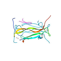 Molmil generated image of 5vb9