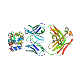 Molmil generated image of 5vjo