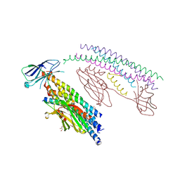 Molmil generated image of 5w5c