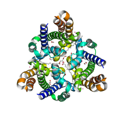 Molmil generated image of 5wtr