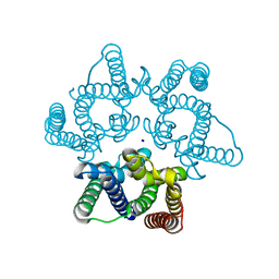 Molmil generated image of 5wuc