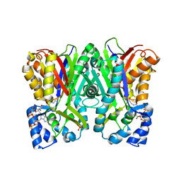 Molmil generated image of 5wx7