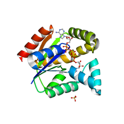 Molmil generated image of 5x6l