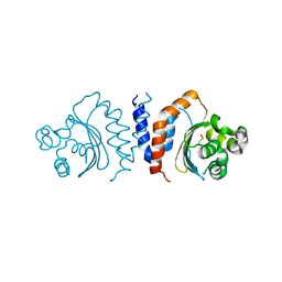 Molmil generated image of 5xhx