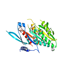 Molmil generated image of 5xja
