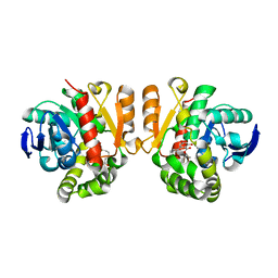 Molmil generated image of 5xo7