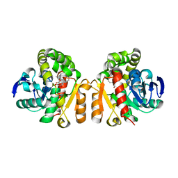 Molmil generated image of 5xo8