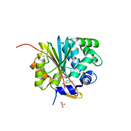 Molmil generated image of 5xvk