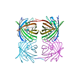 Molmil generated image of 5y8q