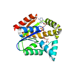 Molmil generated image of 5ycb