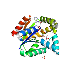 Molmil generated image of 5ycc