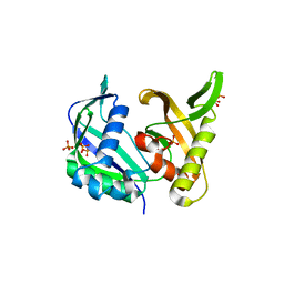 Molmil generated image of 5yi6
