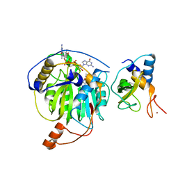 Molmil generated image of 5yni
