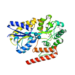 Molmil generated image of 5ysd