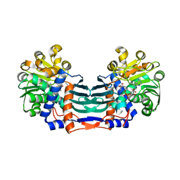 Molmil generated image of 5yu1