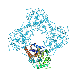 Molmil generated image of 5zbm