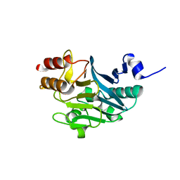 Molmil generated image of 5zgv