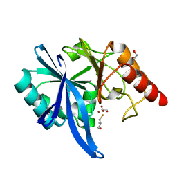 Molmil generated image of 5zjc