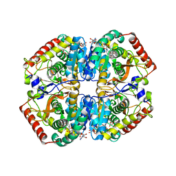Molmil generated image of 5zjd
