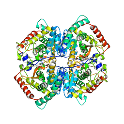 Molmil generated image of 5zjf