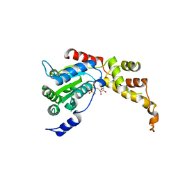 Molmil generated image of 5zqm