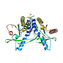 Molmil generated image of 6a06