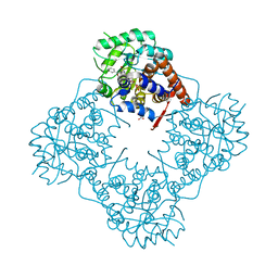 Molmil generated image of 6a0v