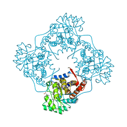 Molmil generated image of 6a19