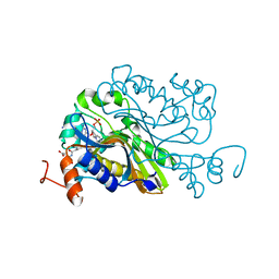Molmil generated image of 6a9a