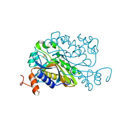 Molmil generated image of 6a9b