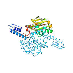 Molmil generated image of 6ab2