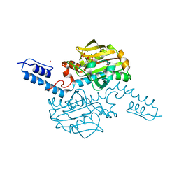 Molmil generated image of 6ab8