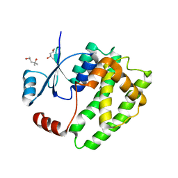 Molmil generated image of 6atp