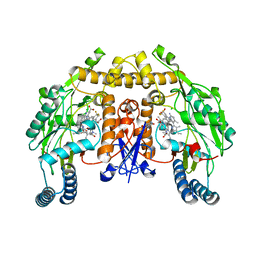 Molmil generated image of 6auu