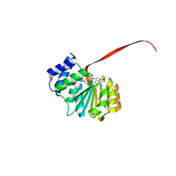 Molmil generated image of 6aw7