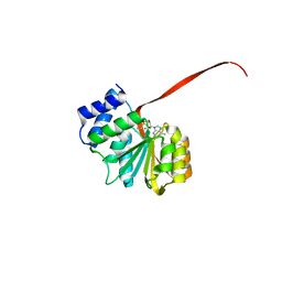 Molmil generated image of 6aw8