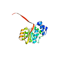 Molmil generated image of 6aw9