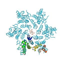 Molmil generated image of 6bhs