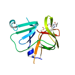 Molmil generated image of 6bic