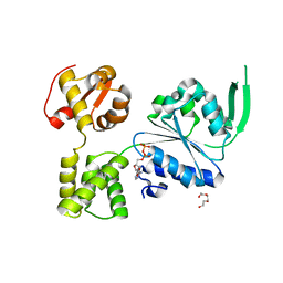 Molmil generated image of 6blb