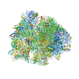 Molmil generated image of 6bok