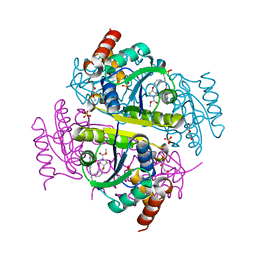 Molmil generated image of 6chn