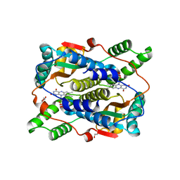 Molmil generated image of 6czp