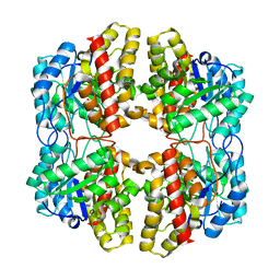 Molmil generated image of 6daq