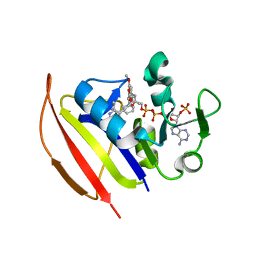 Molmil generated image of 6ddp