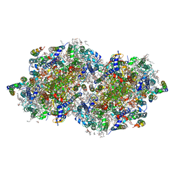 Molmil generated image of 6dhf