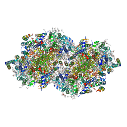 Molmil generated image of 6dhh